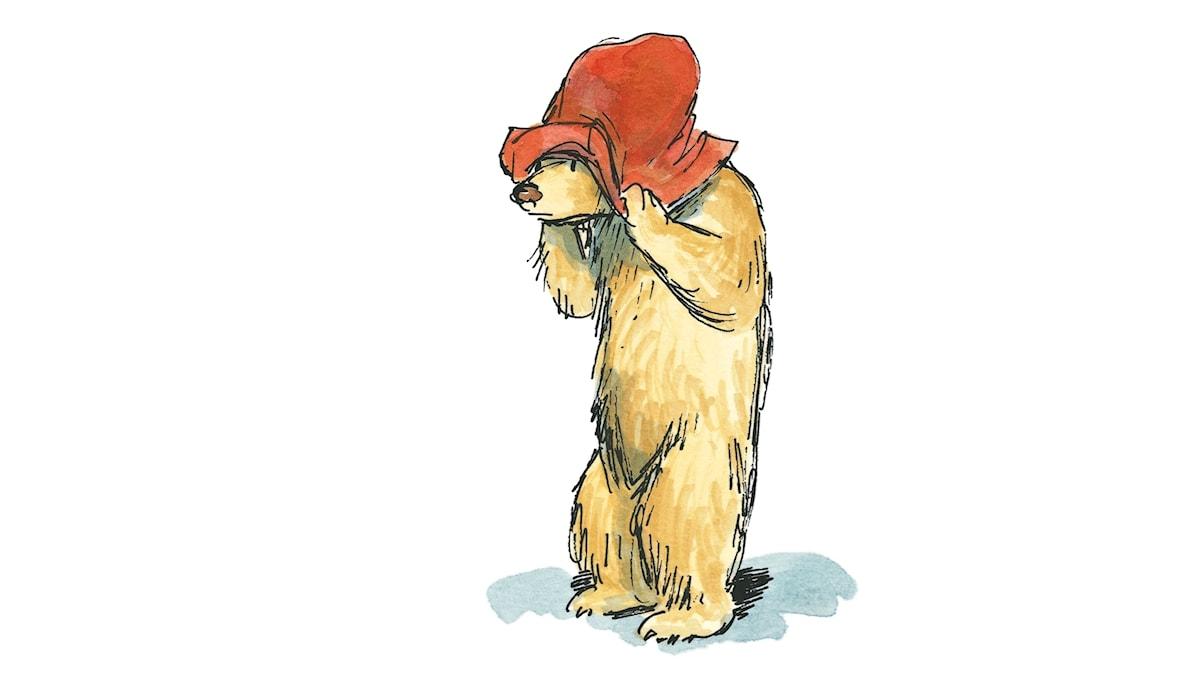 Paddington håller i sin hatt.