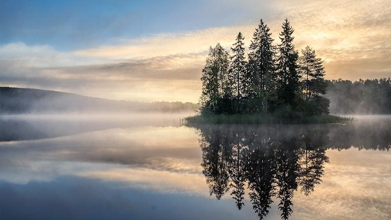 En ö på en spegelblank sjö.