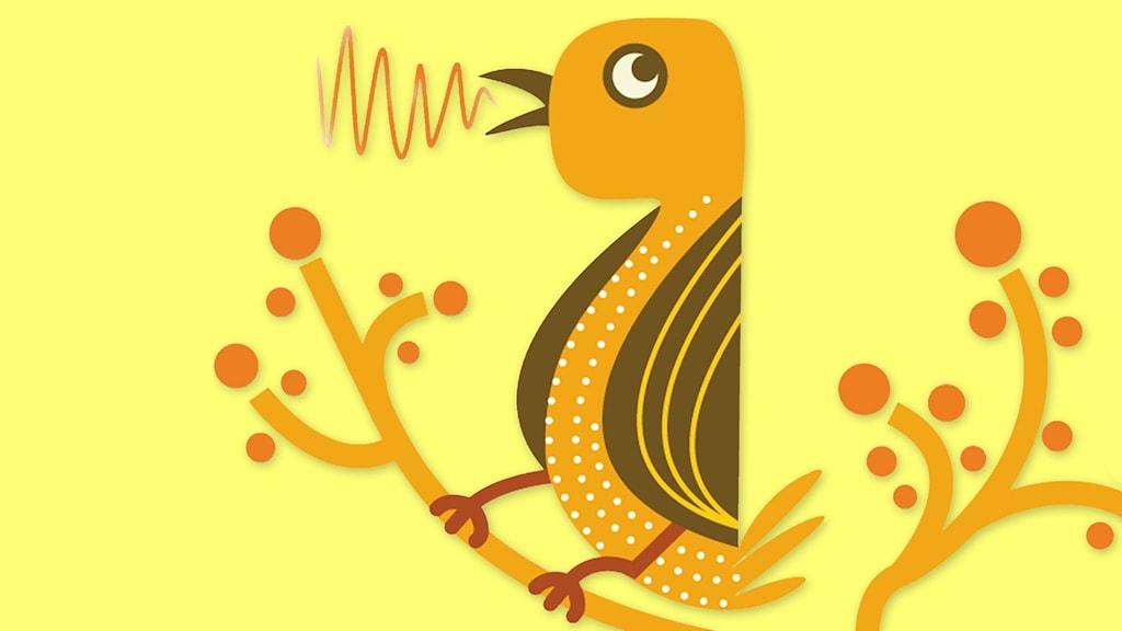 Tecknad fågel.