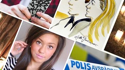 Seriefrossa: Mordet på Therese Johansson Rojo SR.Web.CssMapping.CssClass