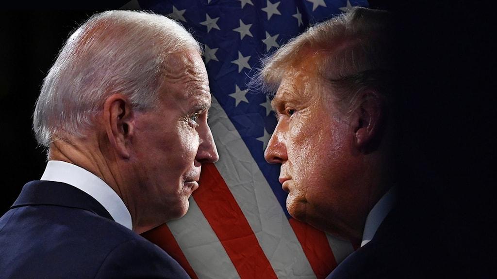 Ett kollage där Joe Biden och Donald Trump kollar på varandra. I bakgrunden syns den amerikanska flaggan.