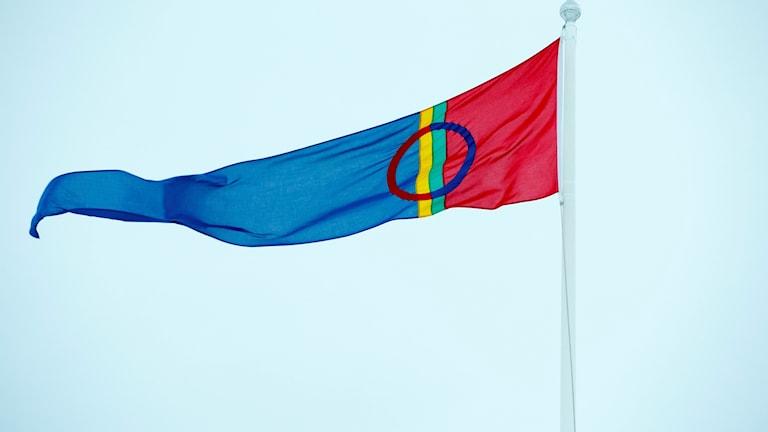 Samisk flagga som blåser.