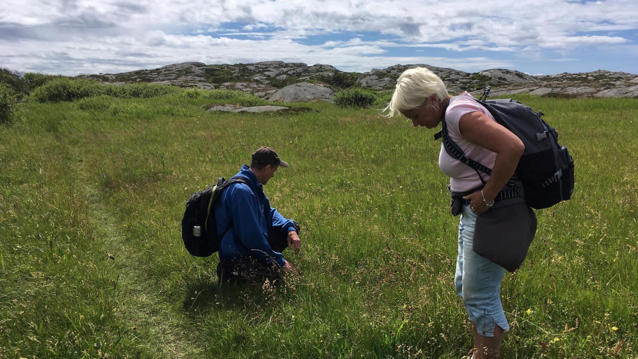 Naturreportaget #7: Bevarad bohuslänsk skärgårdsnatur på Härön