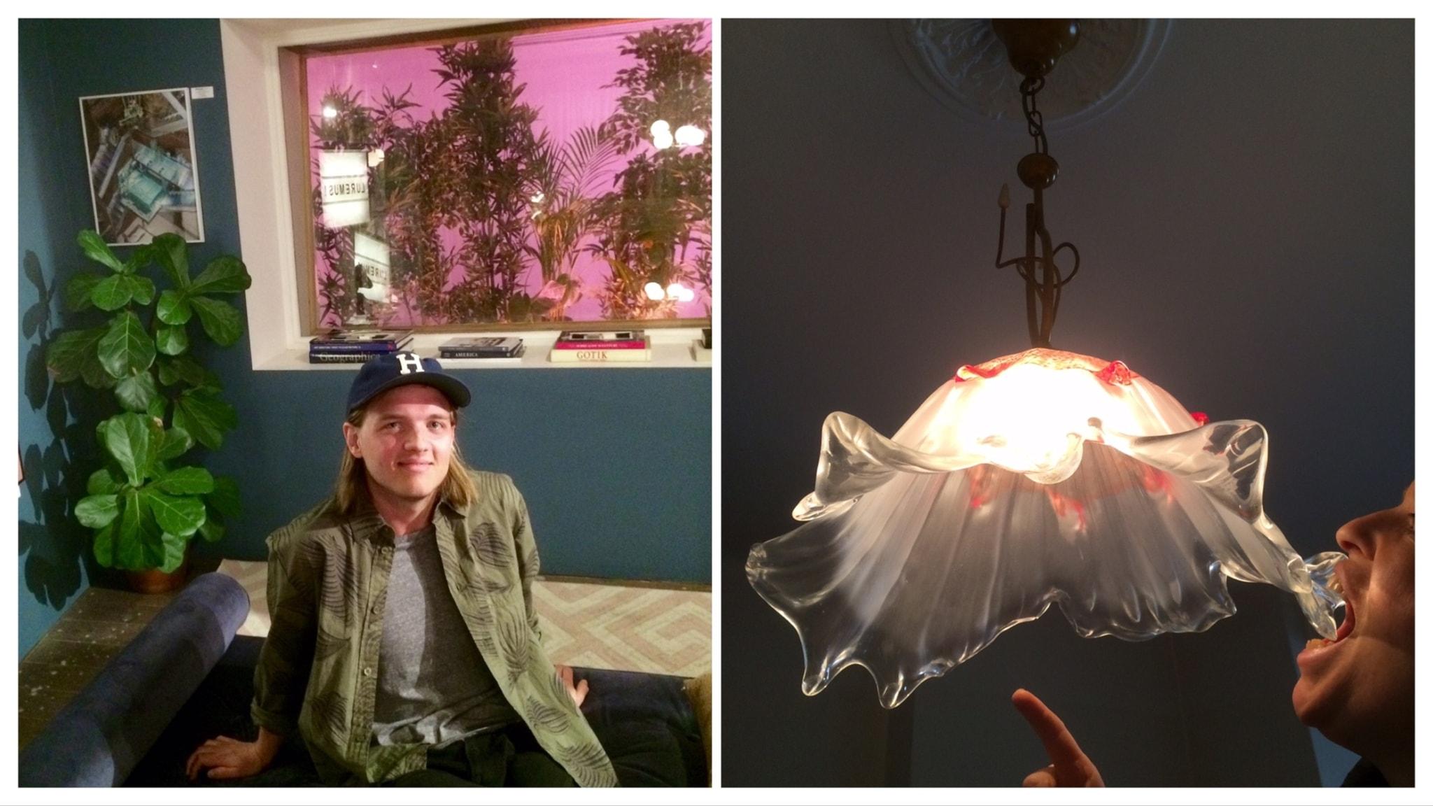 De hemtrevliga:  Mellan moderplantor och kusliga lampor