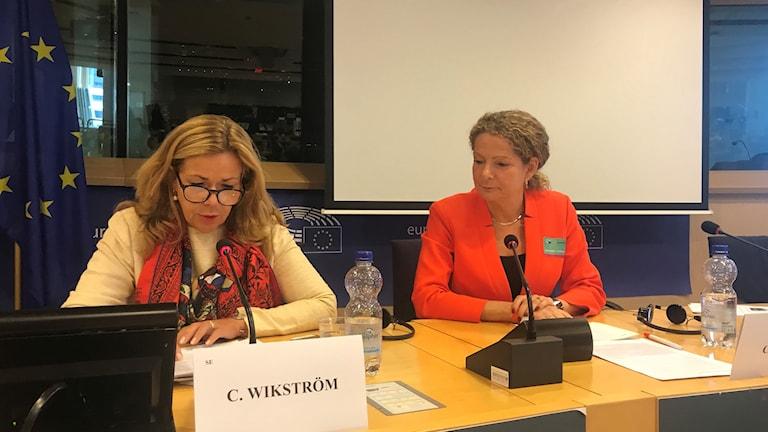 Cilla Benkö i Europaparlamentet