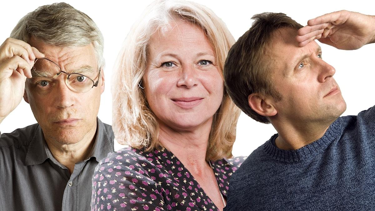 Jonas Hallberg, Helena von Zweigbergk och Göran Everdahl.