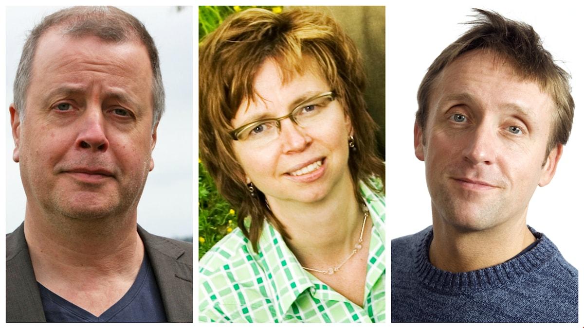 Veckans spanare: Jonathan Lindström, Maja Aase och Göran Everdahl