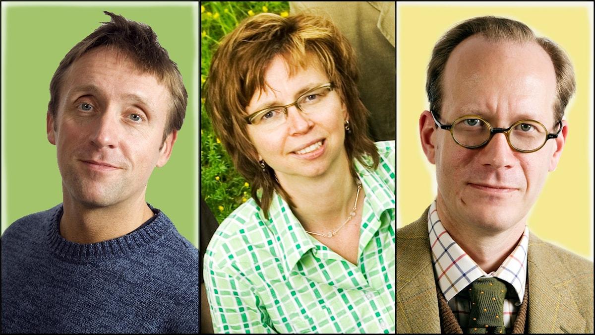 Veckans spanarpanel i bild från vänster: Göran Everdahl, Maja Aase och Johan Hakelius.