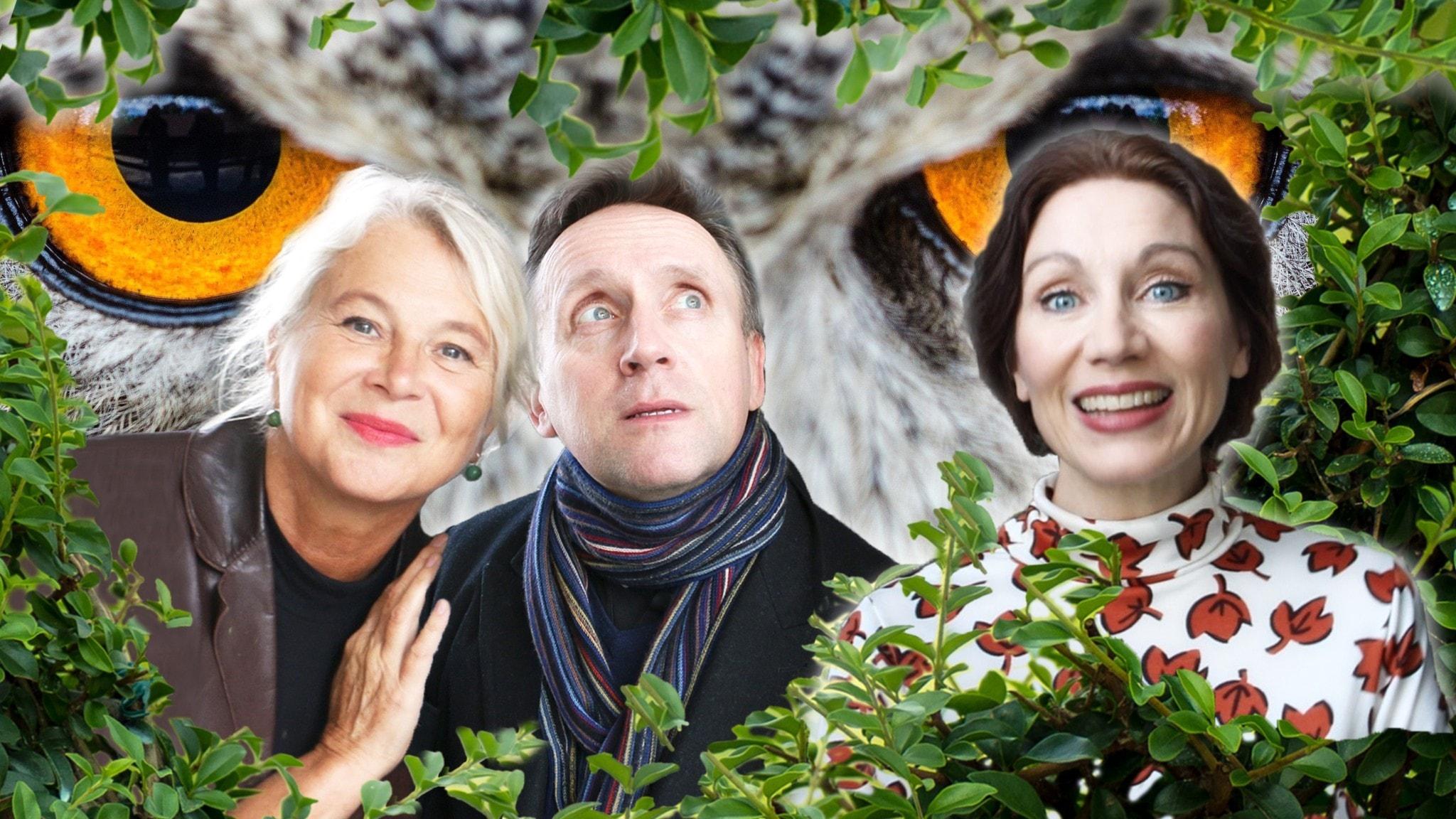 Spanarna Helena von Zweigbergk, Göran Everdahl & Katarina Barrling bjuder på framtidsvisioner med humor.