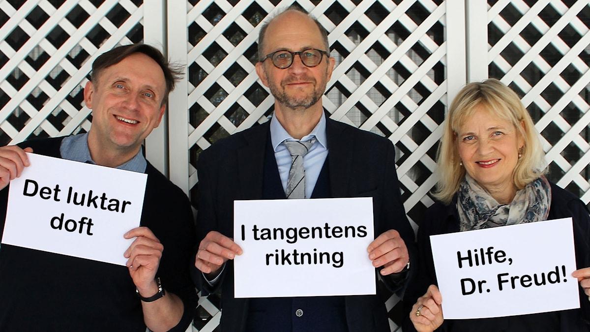 Göran Everdahl, Per Naroskin och Gabriella Ahlström i Spanarna 12 maj 2017.