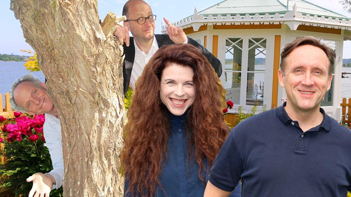 Spanarna säsongsavslutning 2020 med Jessika Gedin, Per Naroskin, Göran Everdahl och Ingvar Storm. Foto Ronnie Ritterland Sveriges Radio
