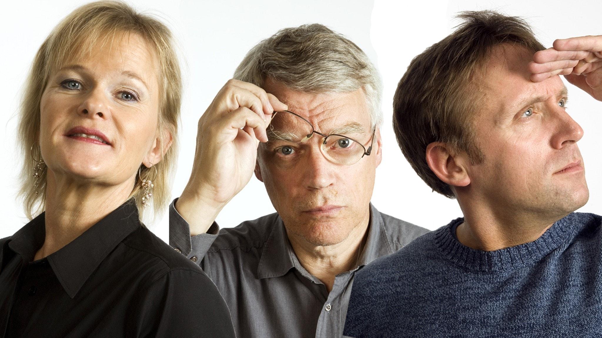 Sissela Kyle, Jonas Hallberg och Göran Everdahl står för veckans framtidsprofetior i Spanarna.
