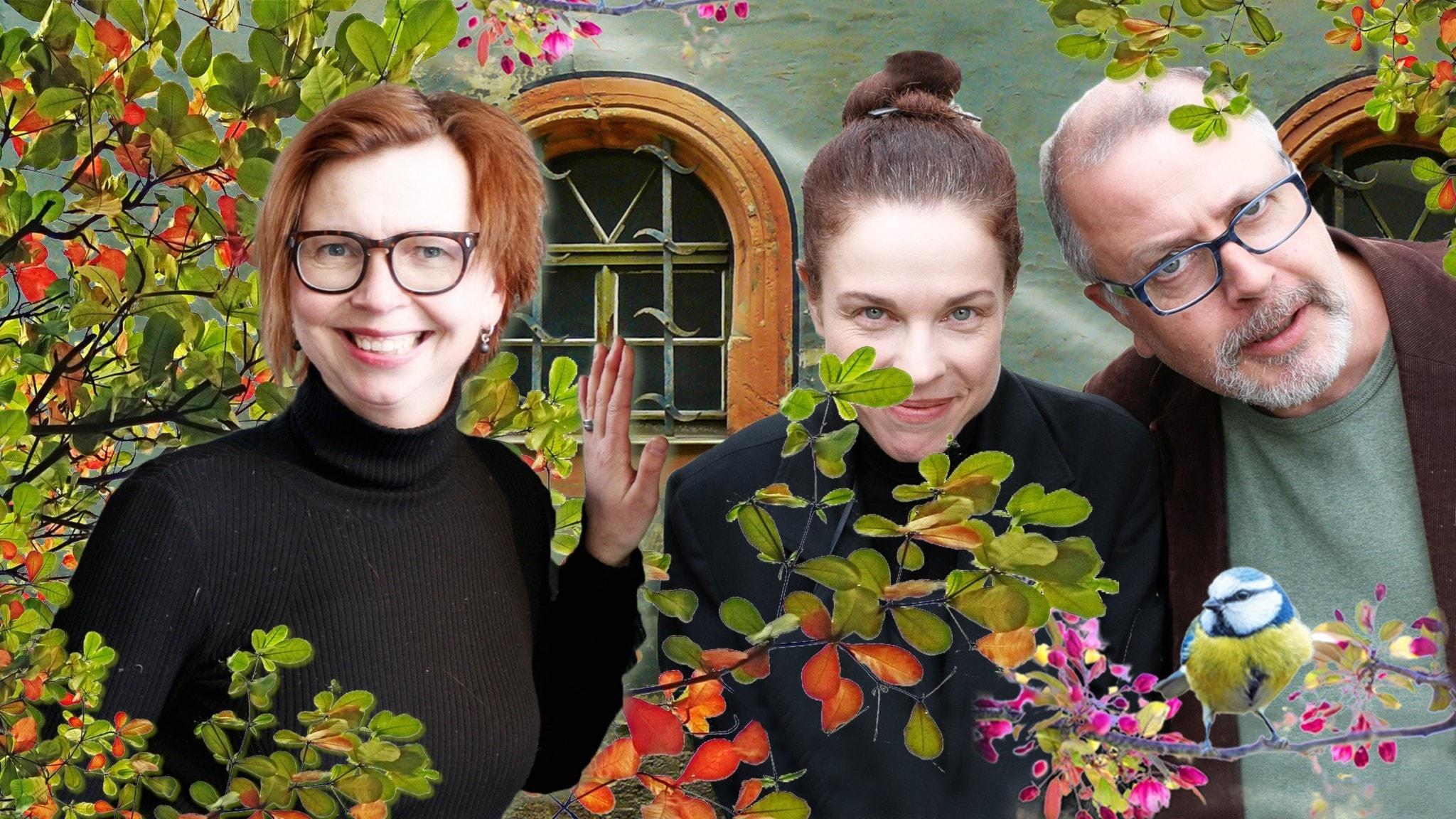 Spanarna Maja Aase, Jessika Gedin och Jonathan Lindström. Foto Ronnie Ritterland Sveriges Radio