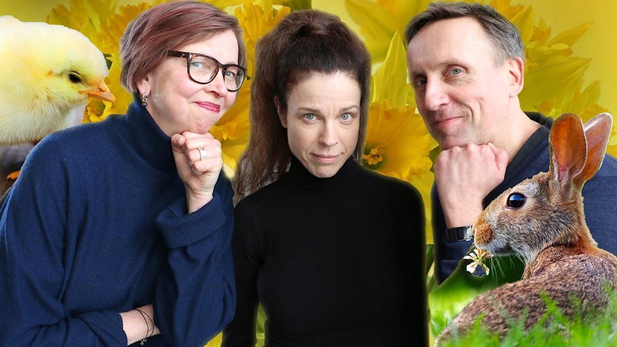 Maja Aase, Jessika Gedin och Göran Everdahl