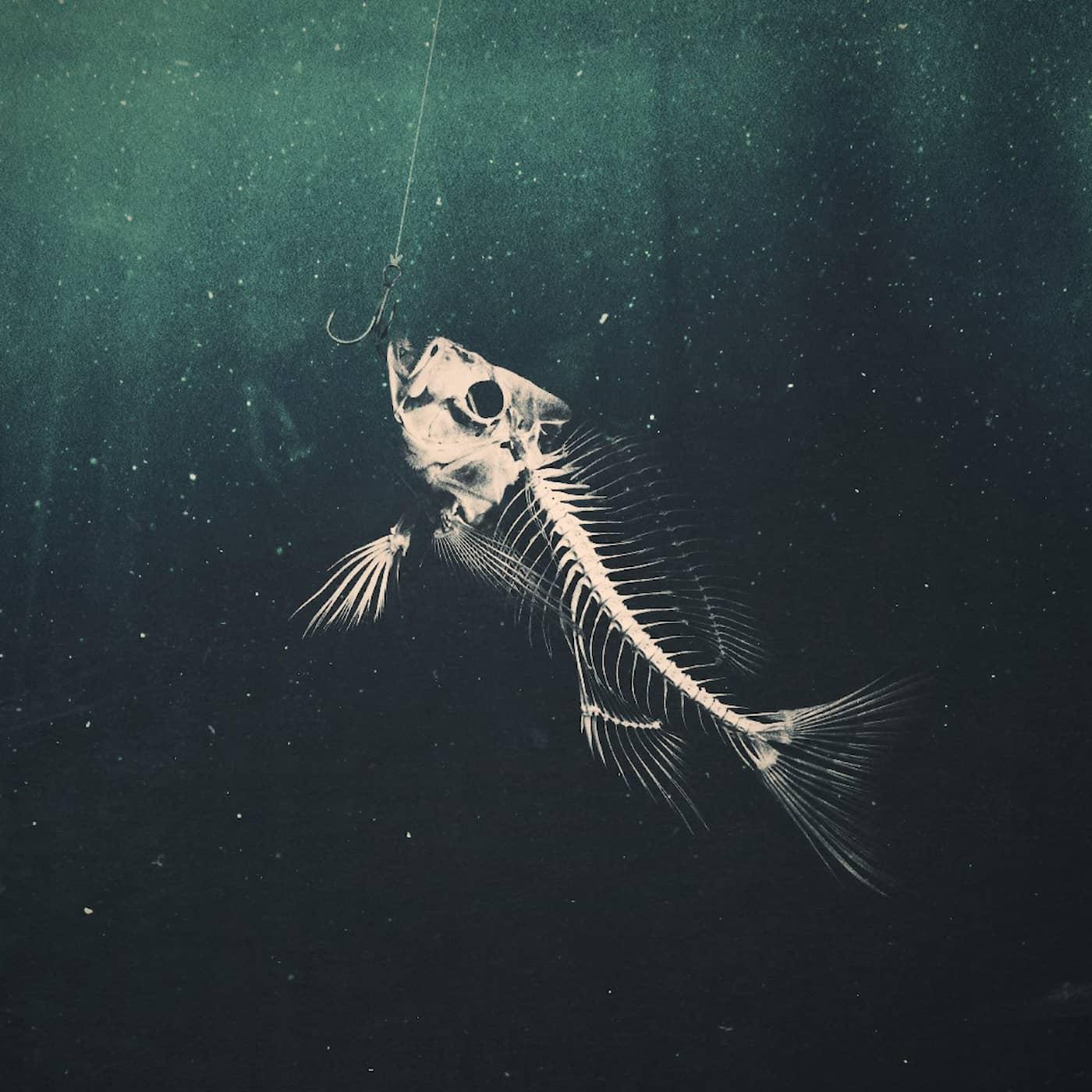 När havet dör