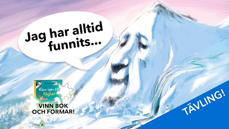 """Berget i Glimmerdalen säger """"Jag har alltid funnits..."""". Bild: Katarina Strömgård"""