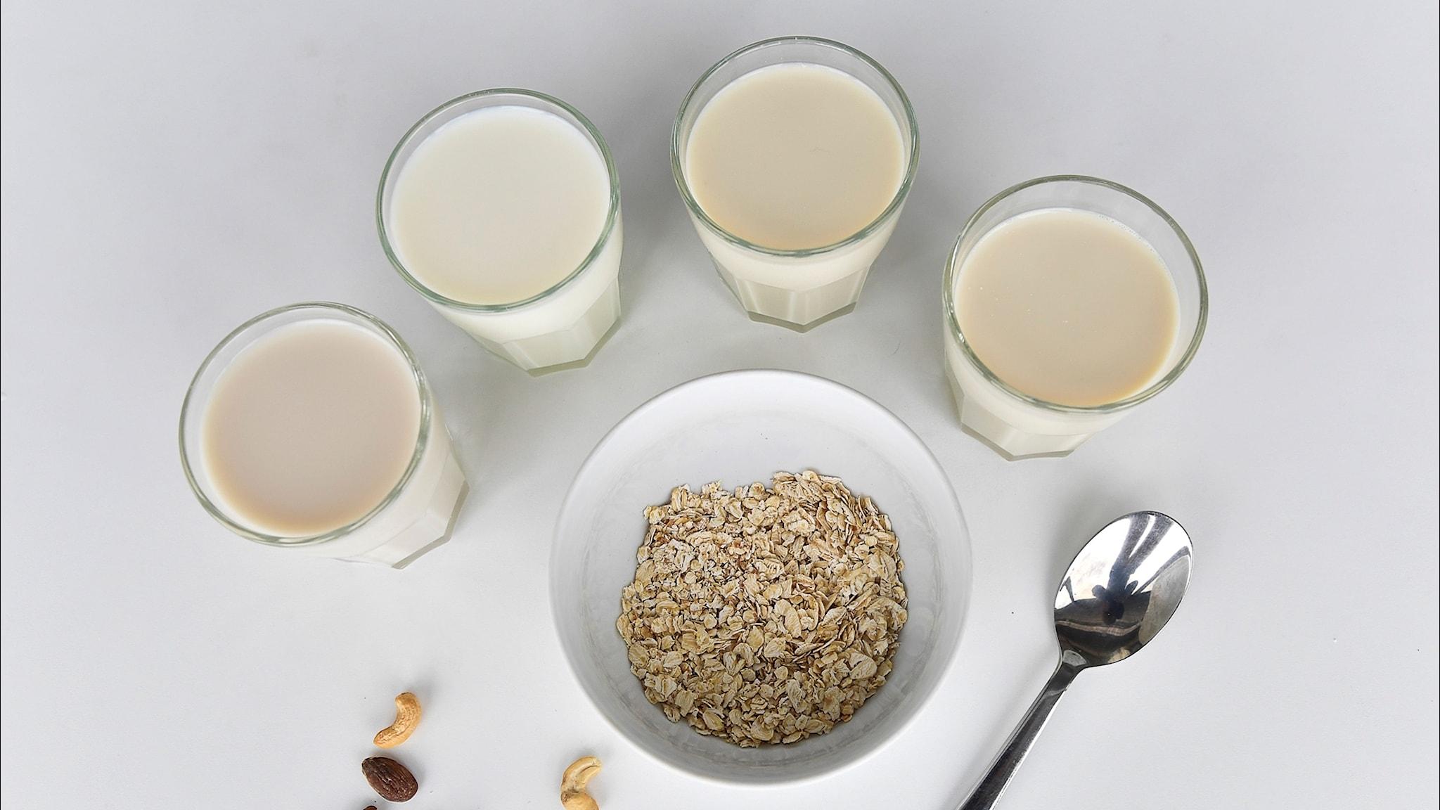 Maito on muuttunut yhteiskunnan pelastajasta moninaiseksi erikoistuotteeksi