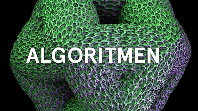 Programbild för UR: Algoritmen