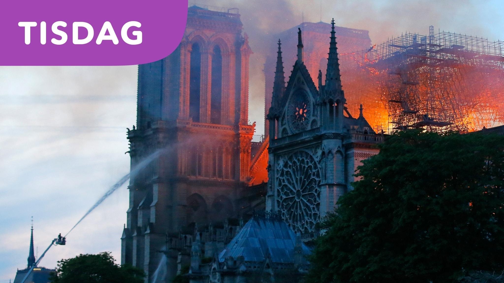 Kända kyrkan Notre-Dame i Paris förstörd i brand