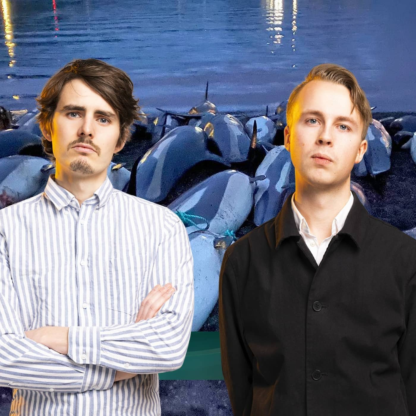 Jägare dödade 1400 delfiner