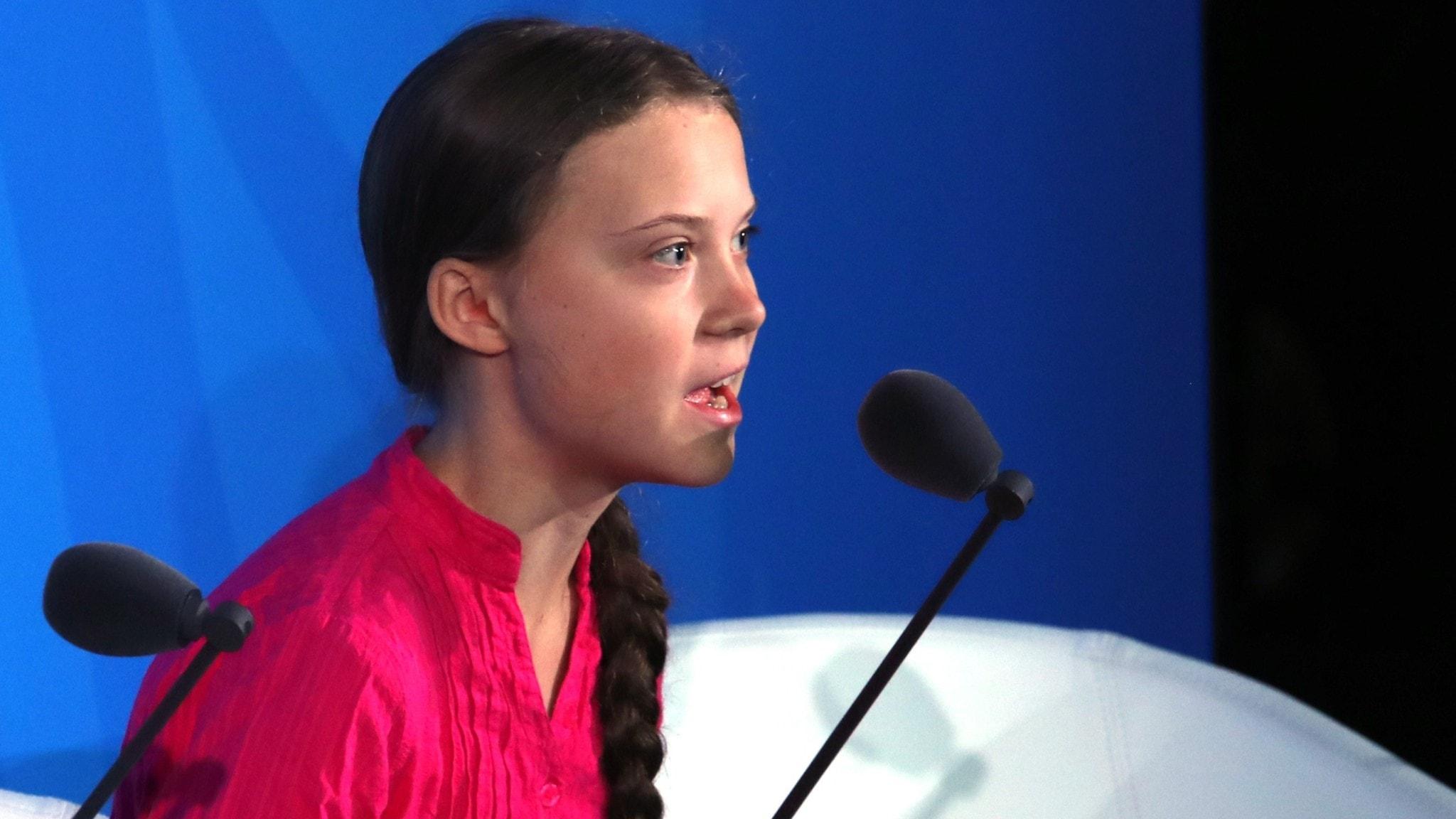 Greta Thunberg till världens ledare: