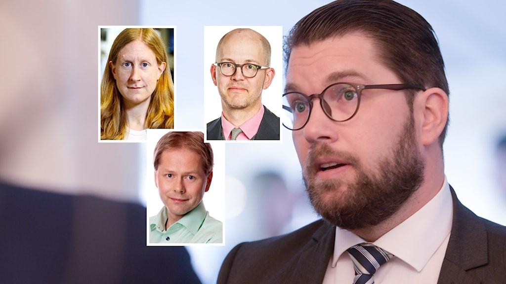 Jimmie Åkesson, Sverigedemokraterna