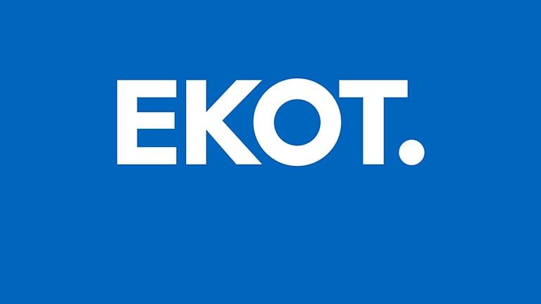 Programbild för Ekot Special