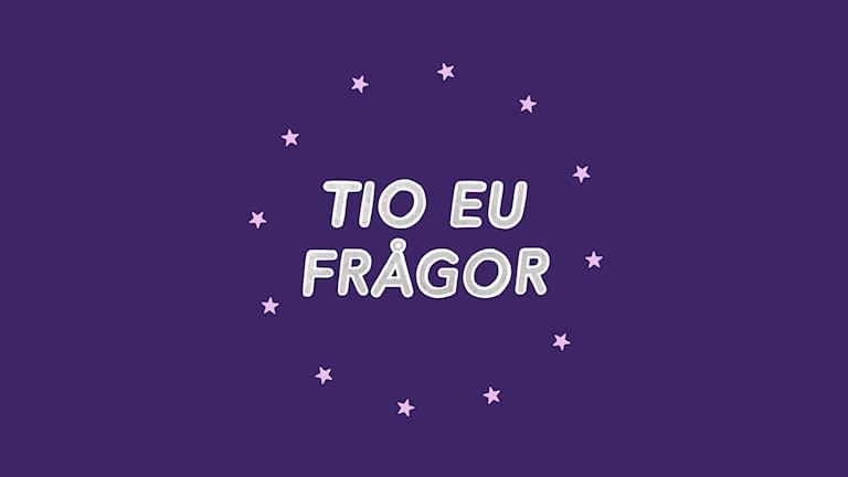 Tio EU-frågor