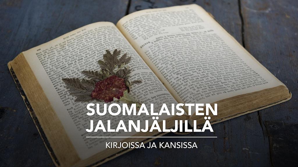 VANHA KIRJA - Gammal bok öppen med några torkade löv på en sida