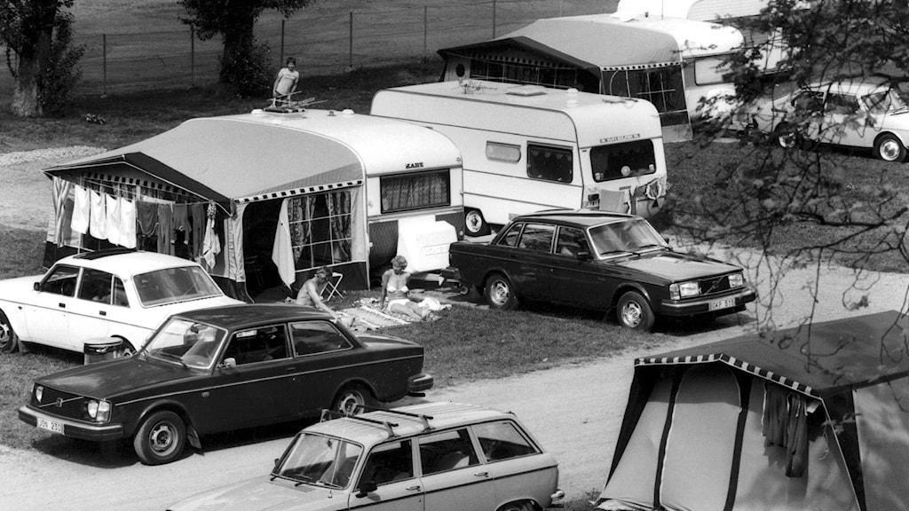Mustavalkokuva leirintäalueesta vuodelta 1983, kuvassa autoja ja telttoja