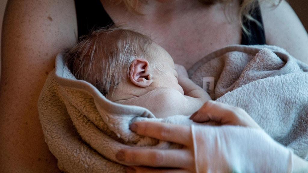 Nyfödd bebis. Arkivbild.