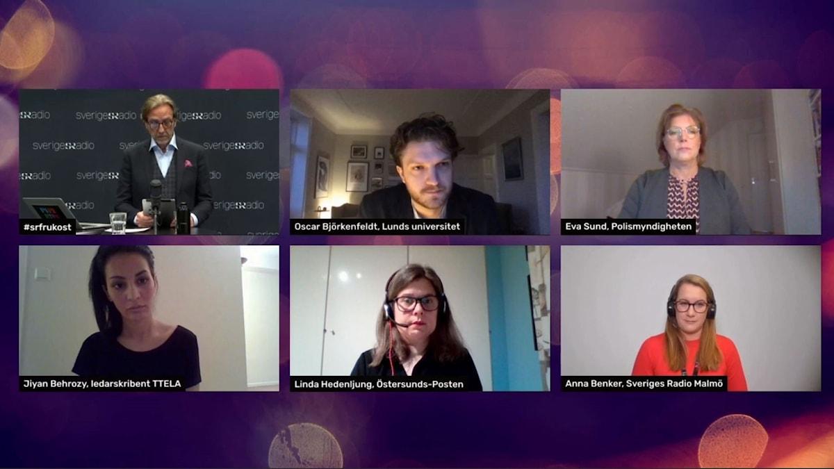 De medverkande i seminariet tillsammans i digitalt möte