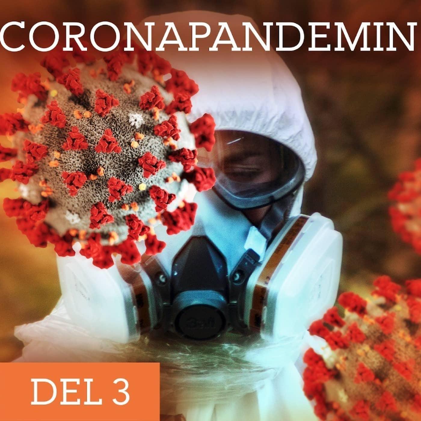 Coronapandemin: Testa, testa, testa