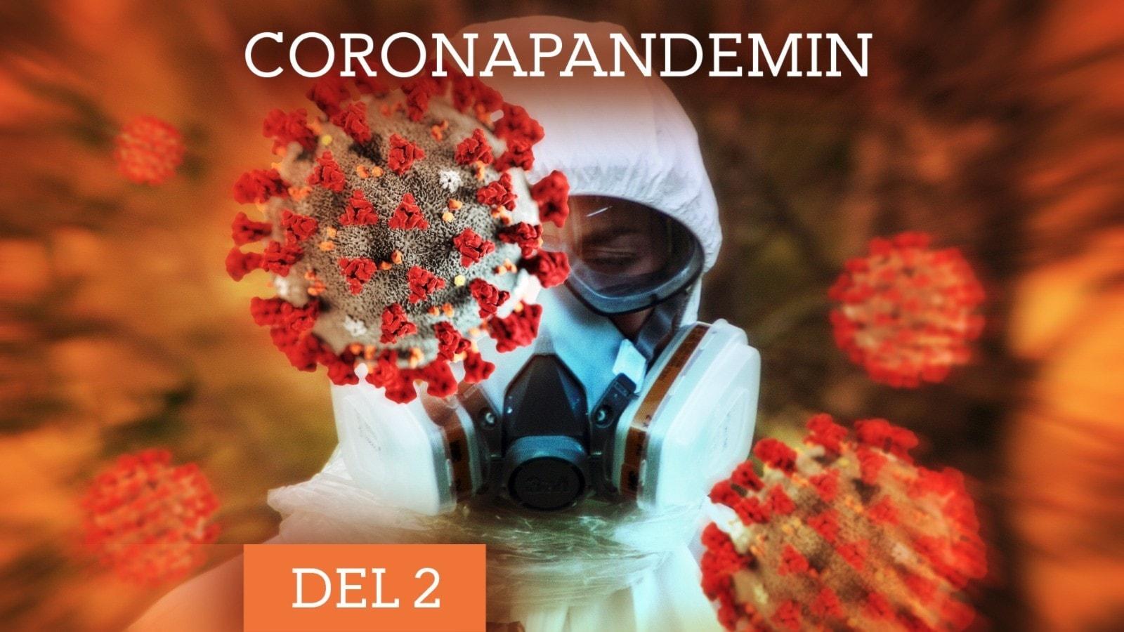 Coronapandemin: Den missade testningen