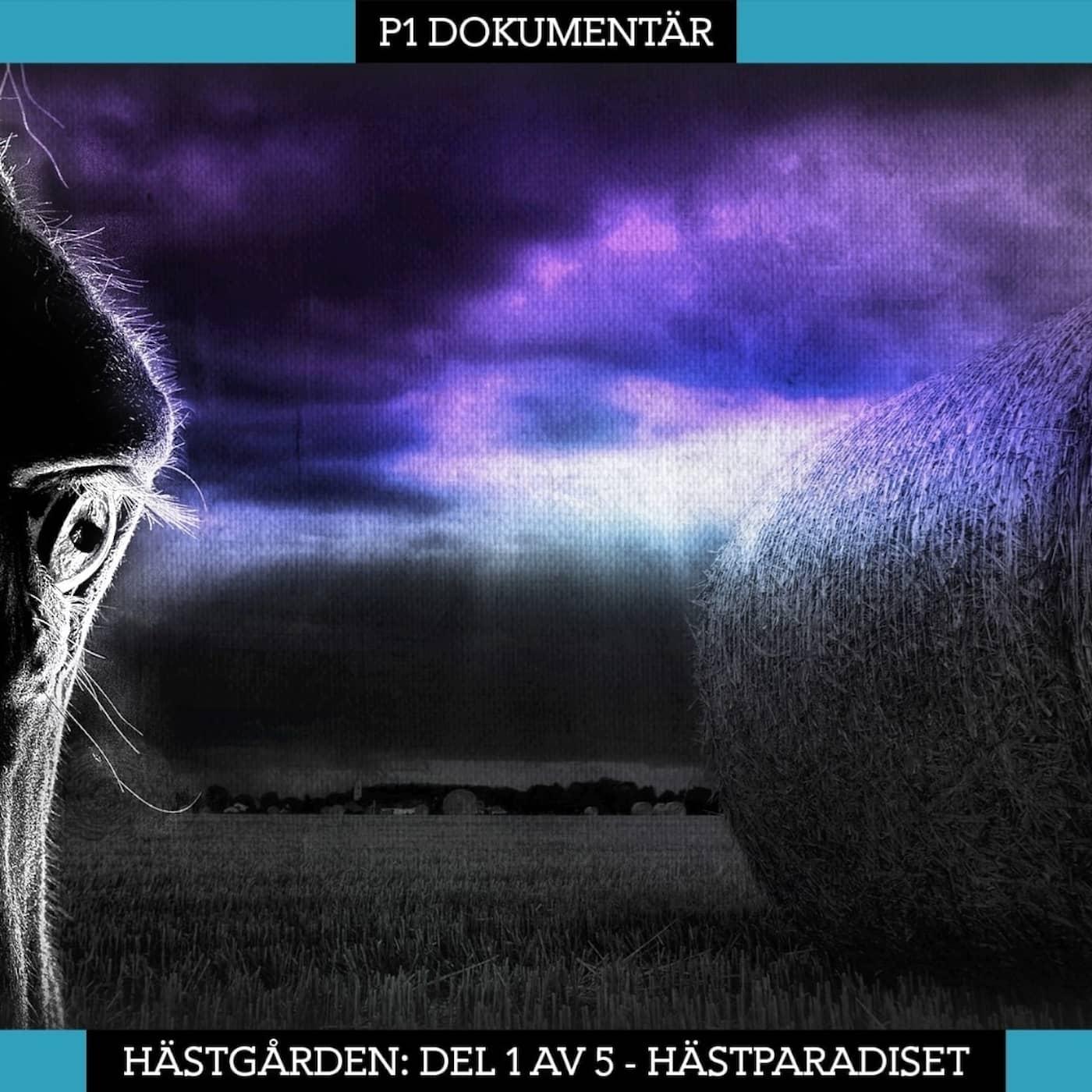 PODDTIPS: Serien Hästgården