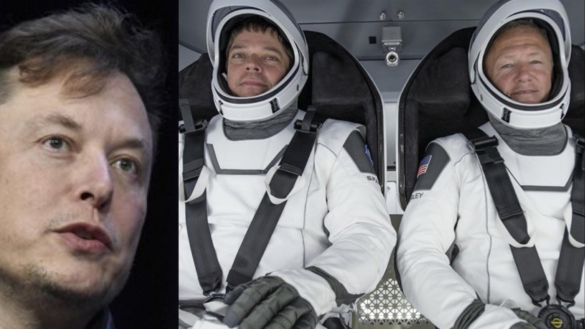 Bildmontage av Elon Musk, Robert Behnken och Douglas Hurley - de två senare i rymddräkt sittandes i rymdfarkost.