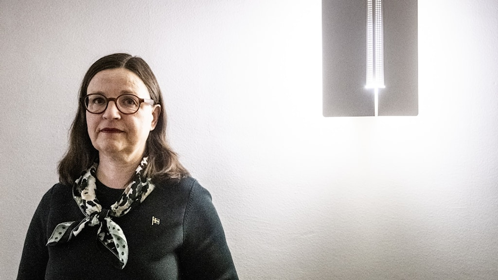 En bild på utbildningsministern Anna Ekström