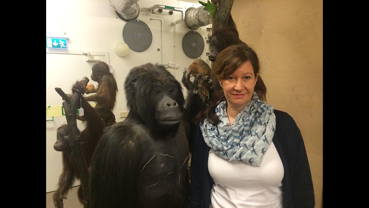 Intendenten Daniela Kalthoff bland människoapor i skyddsrummet under Naturhistoriska museet.
