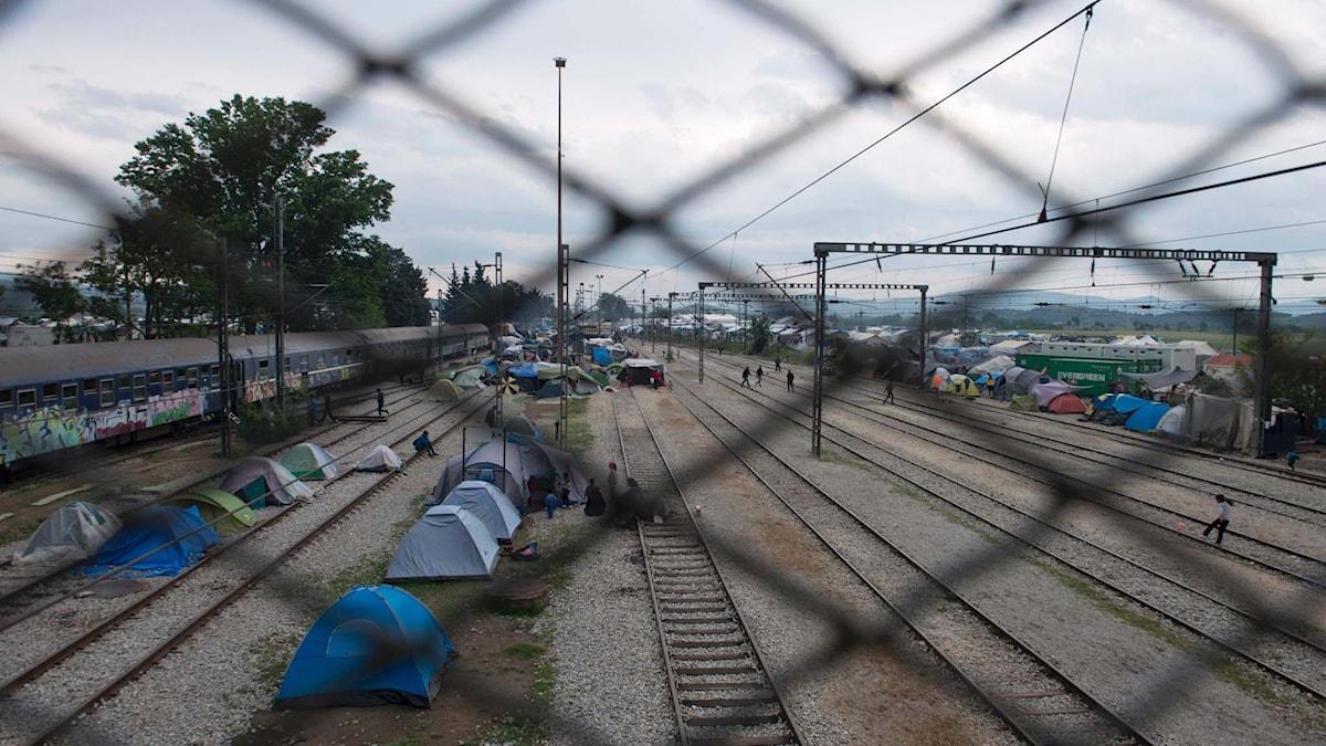 Ett tillfälligt flyktingläger i Idomeni, nära gränsen mellan Grekland och Makedonien