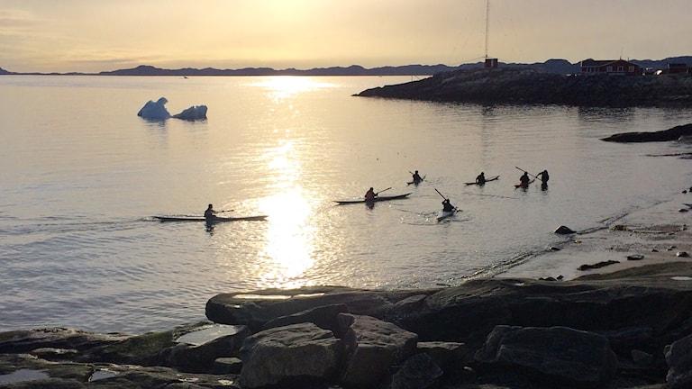 Kajakklubben Nuuk