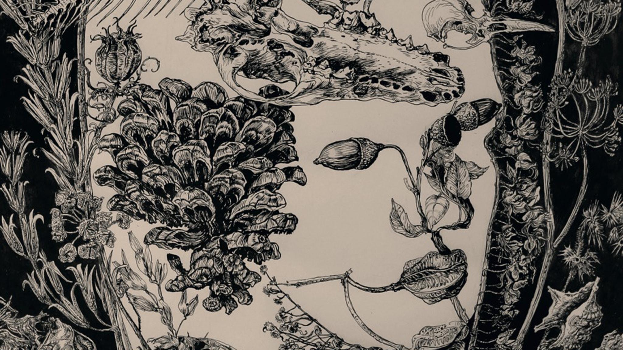 Tiden ikapp en av Sveriges bästa tecknare - Ann Margret Dahlquist-Ljungberg