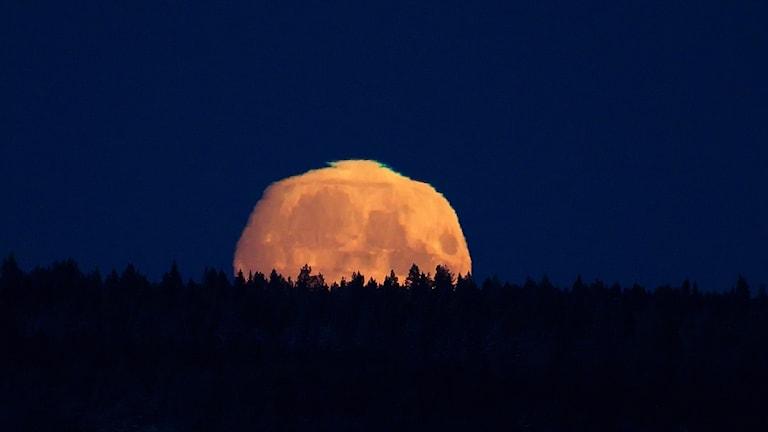 En supermåne i Jämtland 2016.