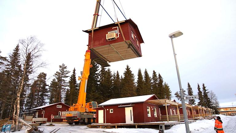Några av Östersundshems Attefallshus lyft på plats i Torvalla i Östersund.
