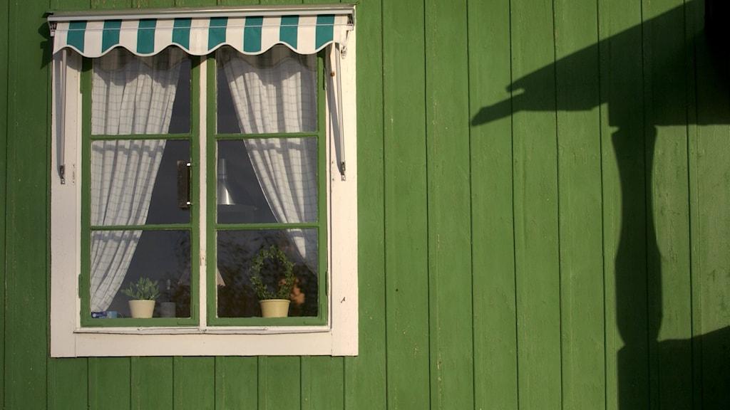 Grönt hus markis
