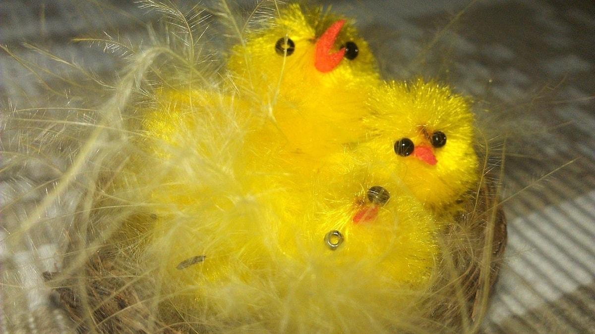 Levysepän toivottu pääsiäismusiikki on puoliksi hengellistä