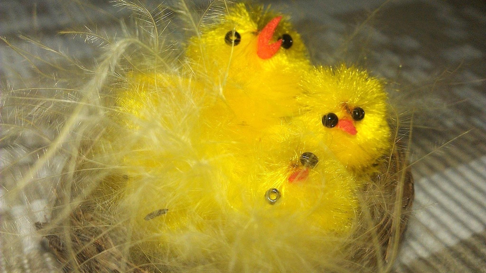 Duniga, gula konstgjorda kycklingar i rede