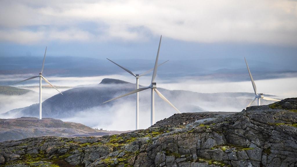 Vindkraftverk mellan berg och vatten