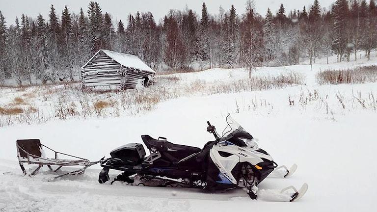 Snöskoter med kälke på ängsmark