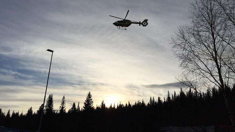 Siluett av helikopter i luften ovan skog