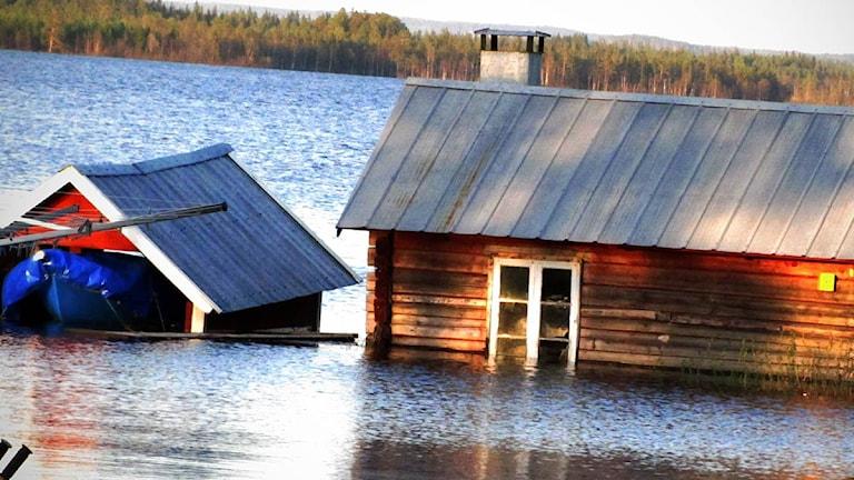 Översvämmade hus i Hammerdal. Foto: Pelle Zackrisson/SR.